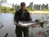 Salmon at Ashford Castle
